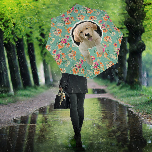 Ta 9 Golden Retriever umbrella