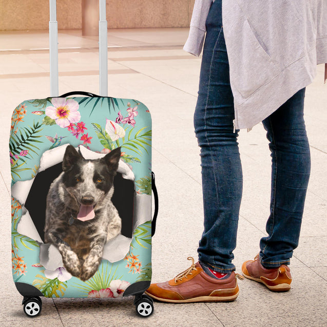 nh 6 heeler torn luggage cover