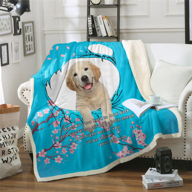 nh 6 golden retriever beside you blanket