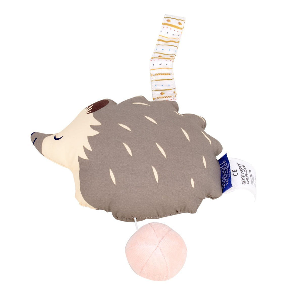 Hedgehog Musical Toy - Tikiri Toys