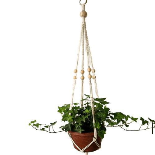 Suspension plante en macramé