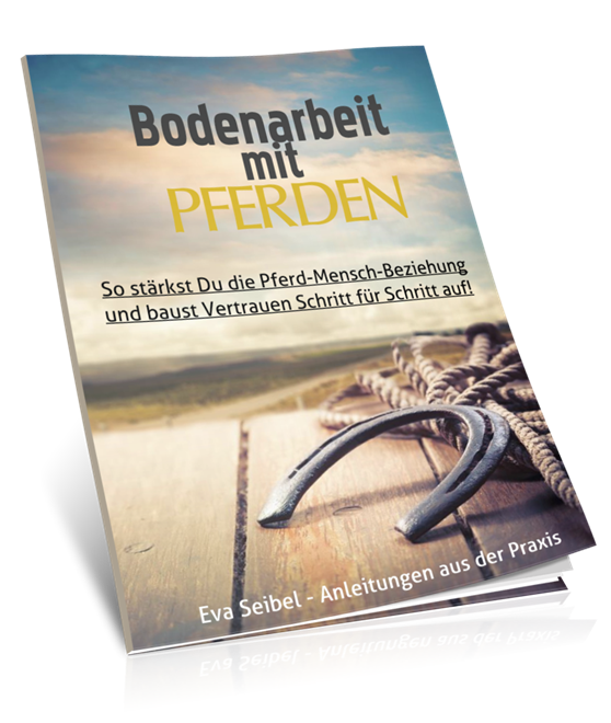 TFH-Bodenarbeits-Workbook