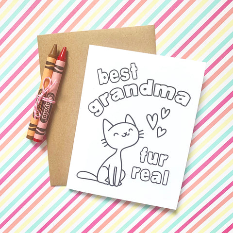Fur Real DIY Mini Card - Splendid Greetings - Funny Greeting Cards