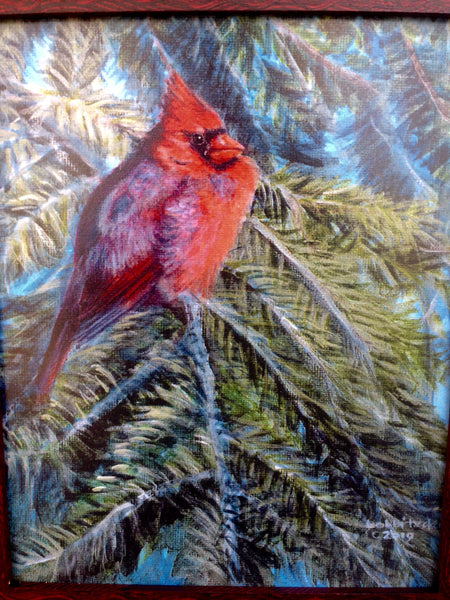"""Cardinal in the Evergreen""  8x10"