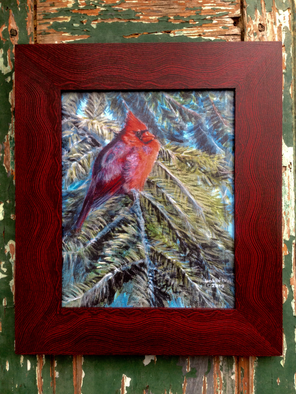 Cardinal in the Evergreen