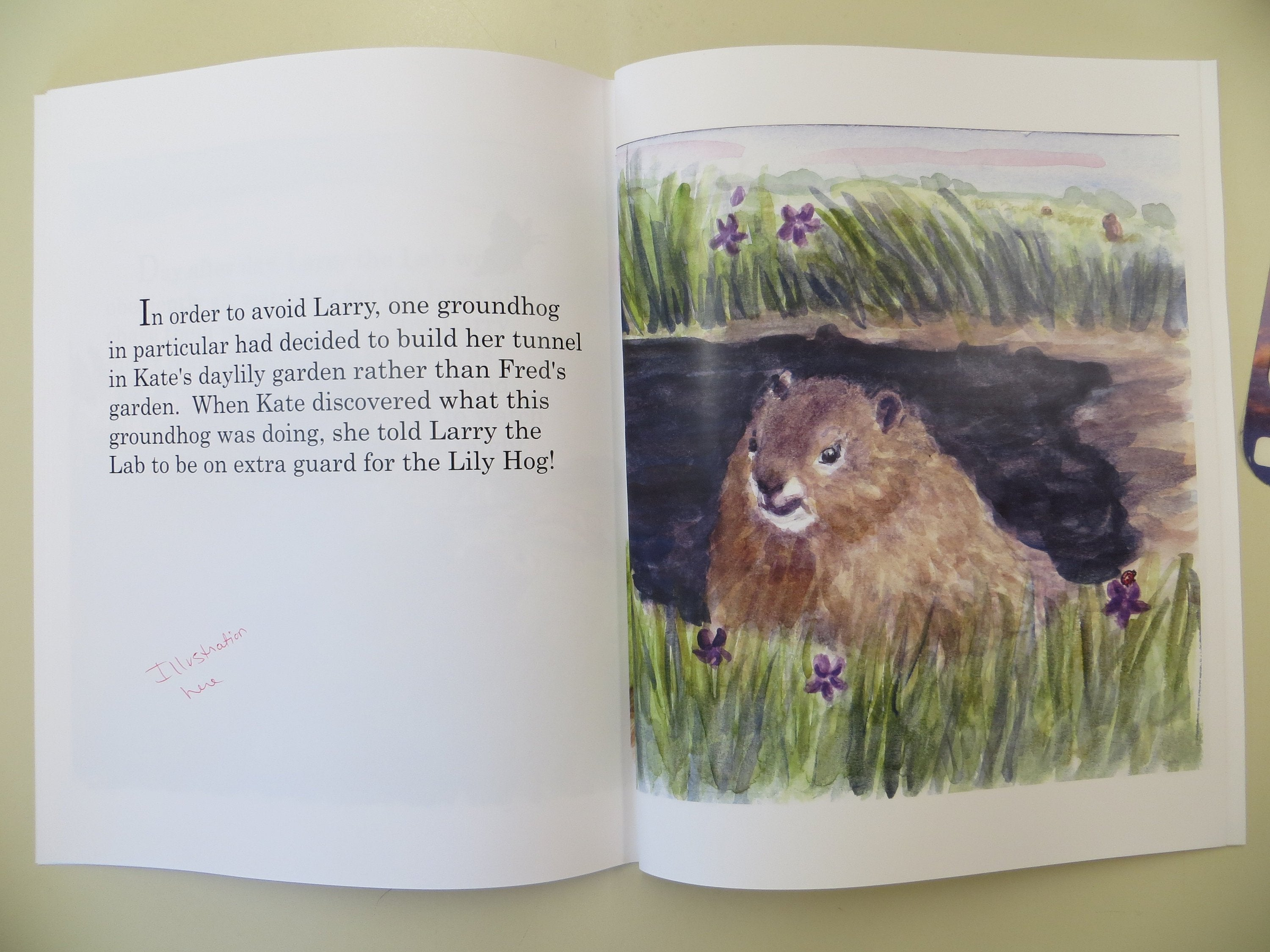 Lily Hog A Delightful Children's Book about two unlikely friends animal book picture book kids book