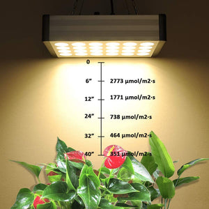 Led Grow Lights for Indoor Plants Full Spectrum, Bozily Sunlike Plant Growing Light Fixture 1600W for Seedlings, Veg, Bloom and Fruiting