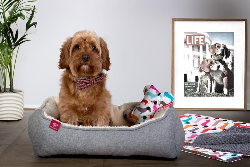 Dog Bed Accessories