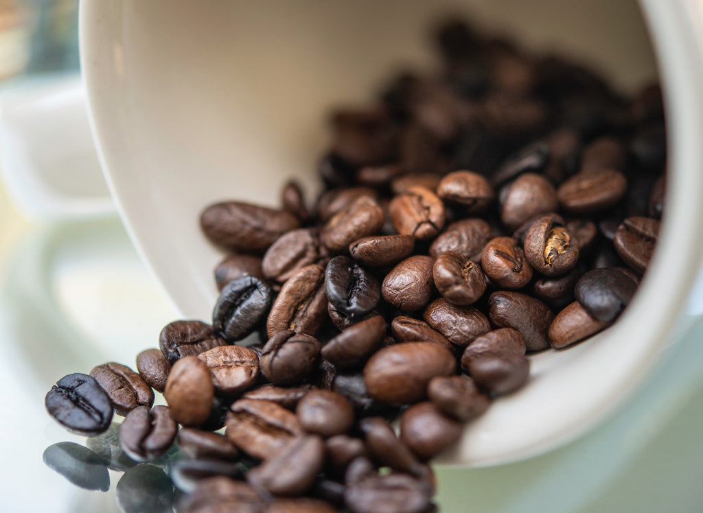 What Makes Our Coffee Different? Demystifying Organic (and other buzzwords)