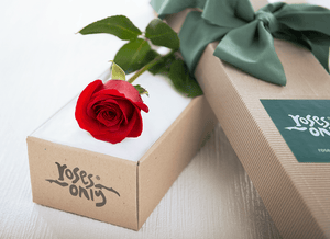 Single Red Roses Valentines Gift Box