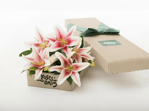6 Pink Lilies Gift Box