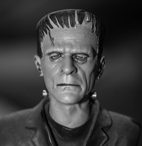 The Cold Frankenstein Scary Halloween Mask