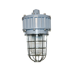 G Series Explosion Proof LED