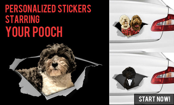 Personalized stickers starring your POOCH!!
