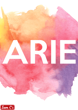 Arie Name Meaning And Origin
