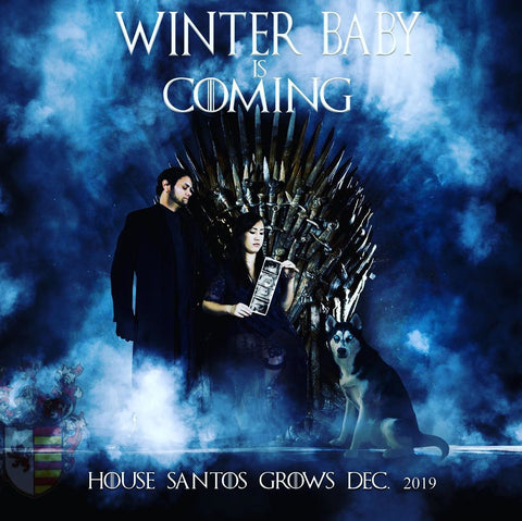 game of thrones pregnancy announcement