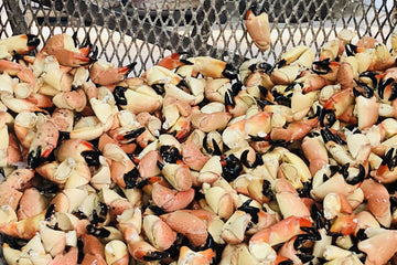 The Return of The Stone Crabs: Where To Get Crackin'
