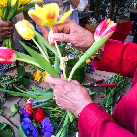 A woman's hands and arms in a red jacket with a selection of cut tulips in her hand.