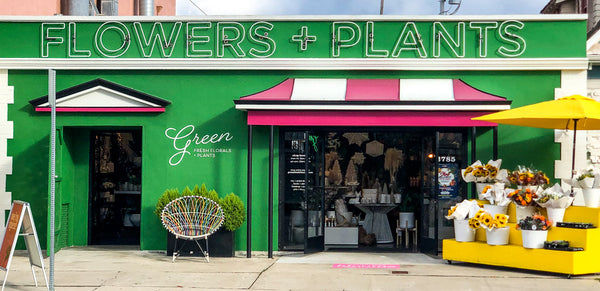 Store Front of Green Fresh Florals + Plants