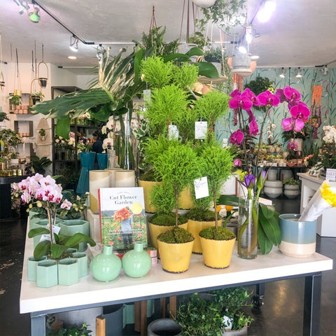 Green Fresh Florals + Plants Interior Shot