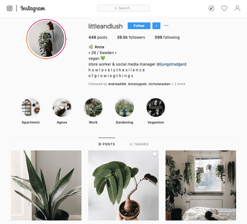 20 Must Follow Plant Instagrammers Green Fresh Florals Plants