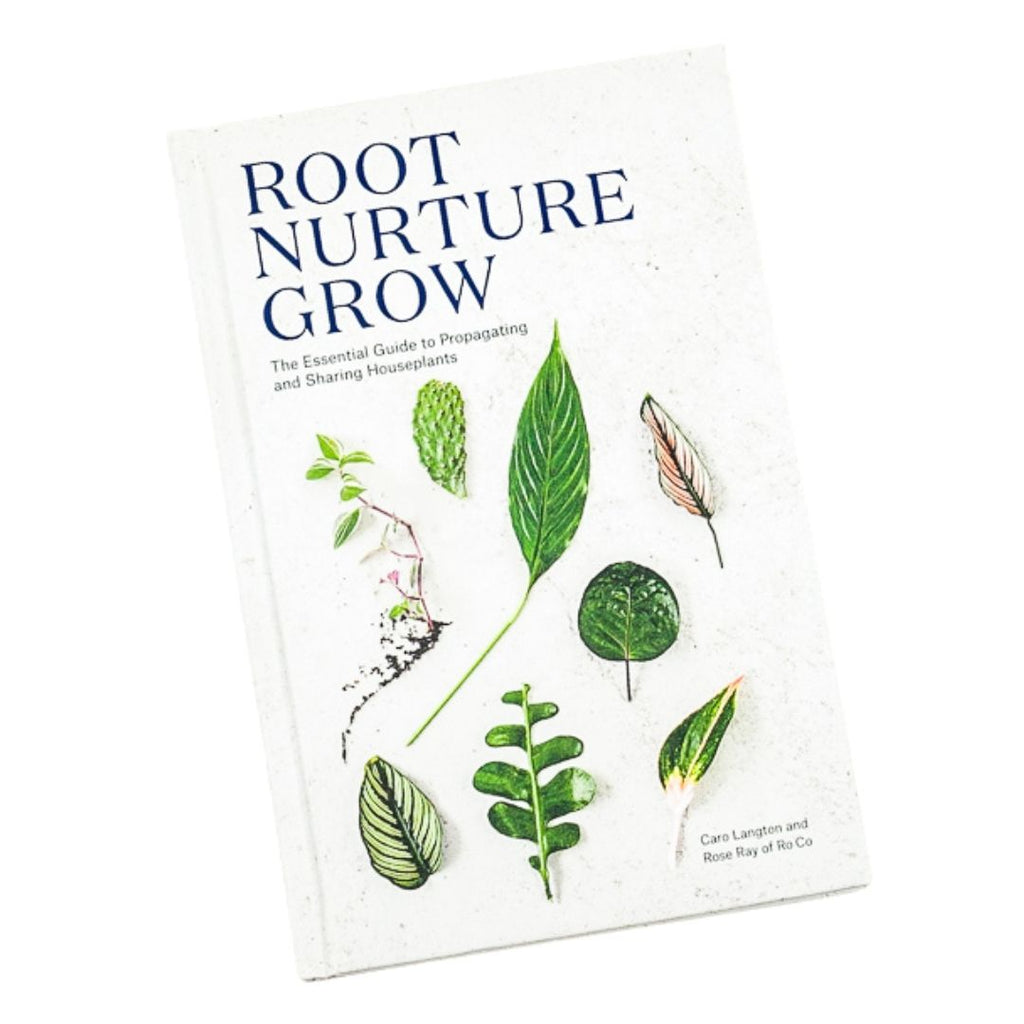 Root Nurture Grow- Essential Guide
