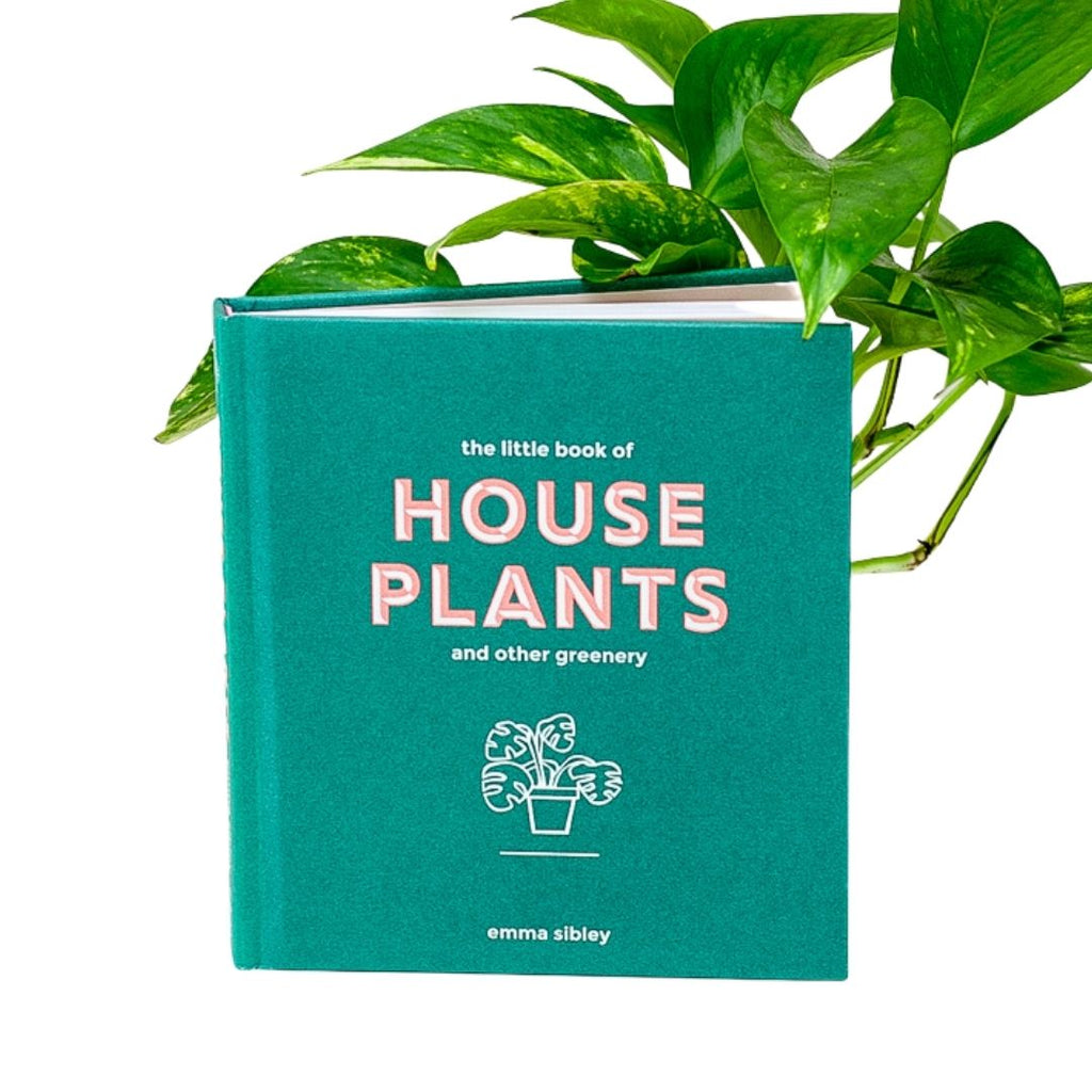 Little Book of Houseplants and Other Greenery