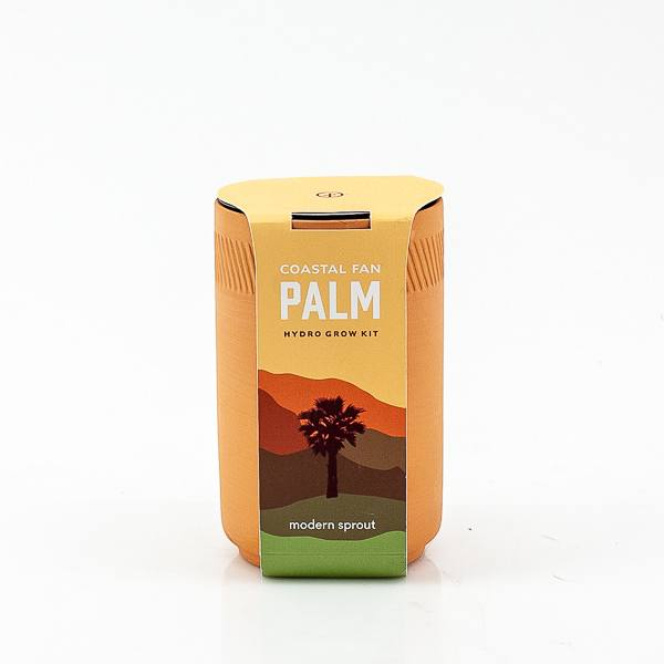 Coastal Fan Palm Terracotta Grow Kit