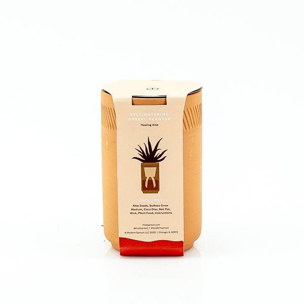 Healing Aloe Terracotta Grow Kit