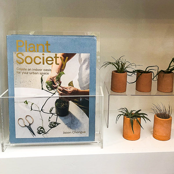 Plant Society : Create an Indoor Oasis for your Urban Space
