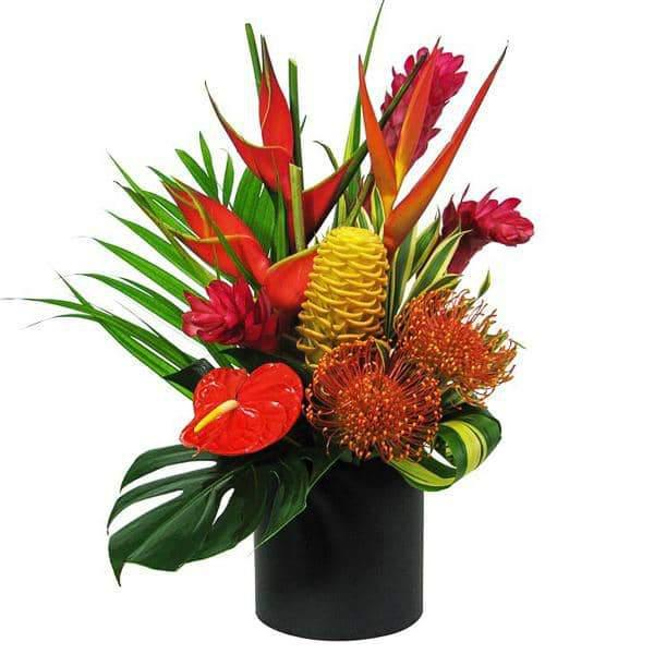 Deluxe Tropical Delight-Flowers-Green Fresh Florals + Plants