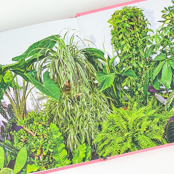 Little Book of Big Plants