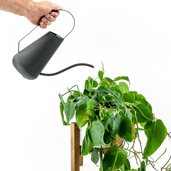 Textured Matte Black Watering Can