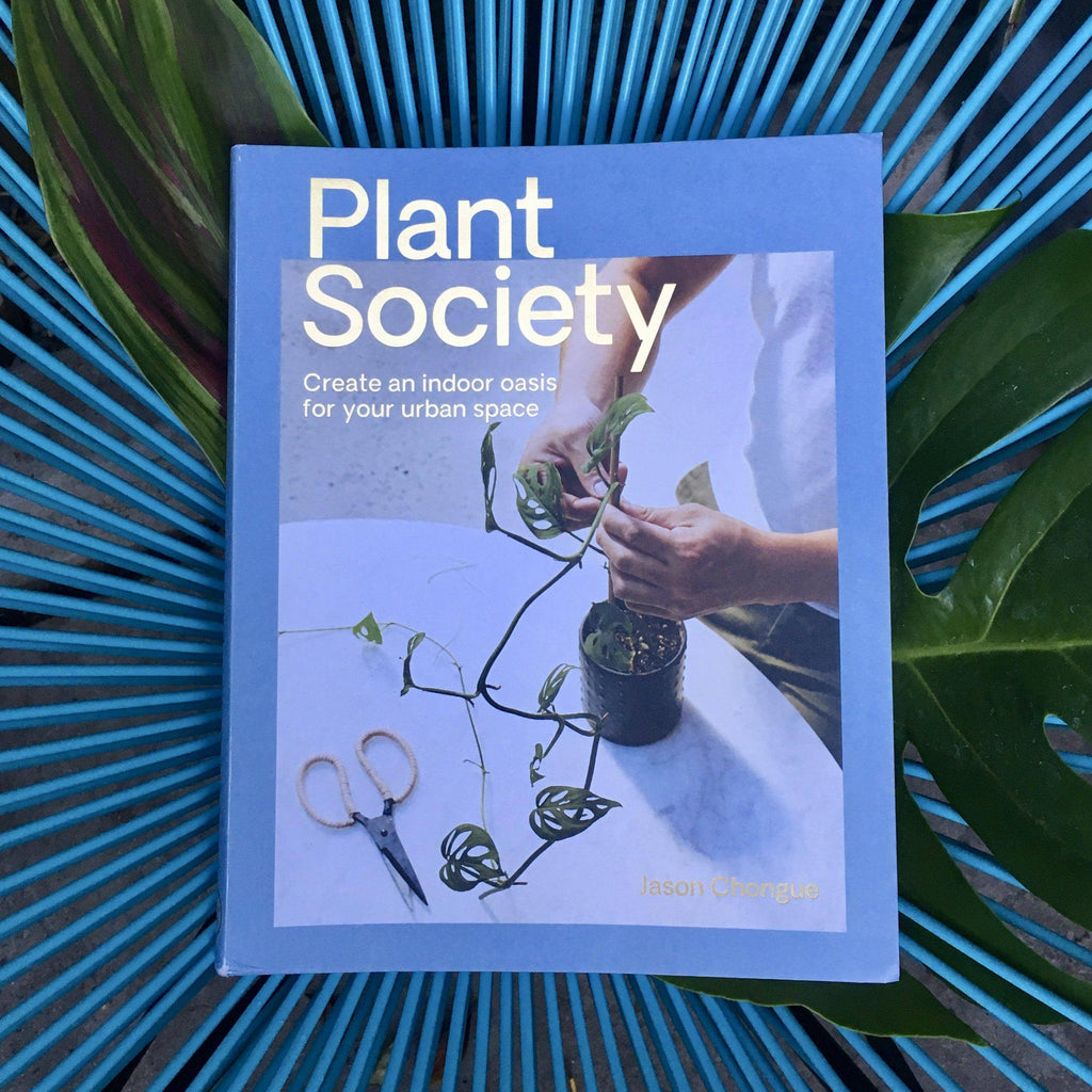 Plant Society : Create an Indoor Oasis for your Urban Space-Home & Gift-Green Fresh Florals + Plants