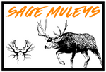 Big Buck Decal