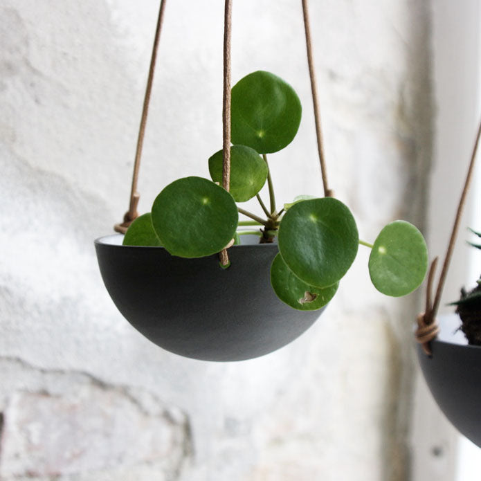 Hanging Bowl, Black (mini)