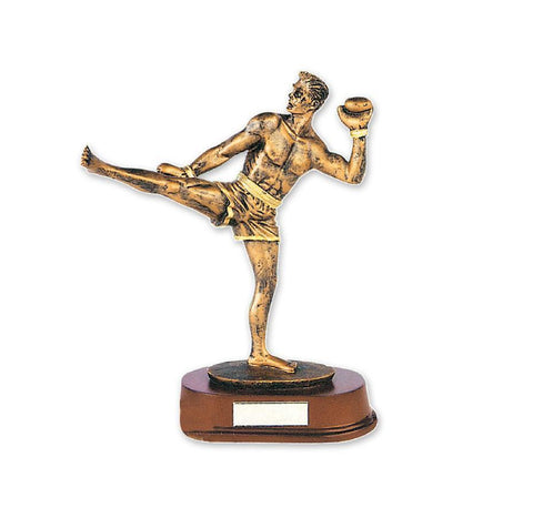 MAR-323 | Kickboxing Trophy Award - quality-martial-arts