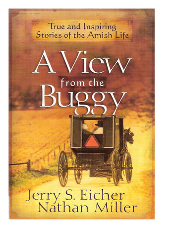 A View From the Buggy Book