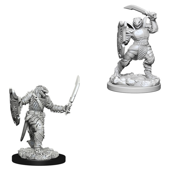 D&D Nolzur's Marvelous Miniatures: Dragonborn Female Paladin (73341)