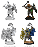 D&D Nolzur's Marvelous Miniatures: Dragonborn Paladin (Male) (73200)