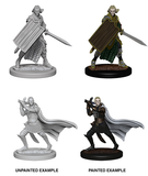 Pathfinder Deep Cuts: Elf Male Paladin (72608)