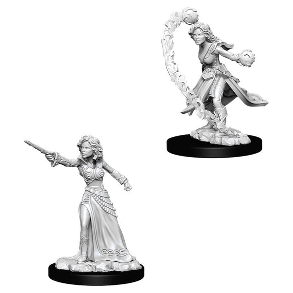 Pathfinder Deep Cuts: Human Female Wizard (73412)