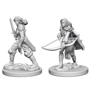 Pathfinder Deep Cuts: Female Human Fighter (72597)
