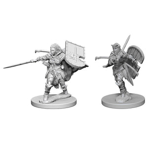 Pathfinder Deep Cuts: Human Female Paladin (72607)