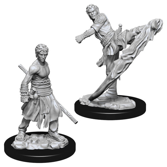 D&D Nolzur's Marvelous Miniatures: Male Half-Elf Monk (73838)