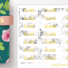 Load image into Gallery viewer, Marble and Foil Class Labels School Functional Stickers