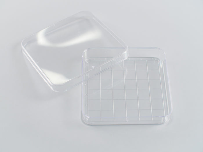 Square Gridded Search Dish