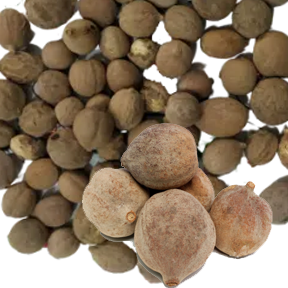 Baheda Whole(Terminalia Bellirica) Premium Quality