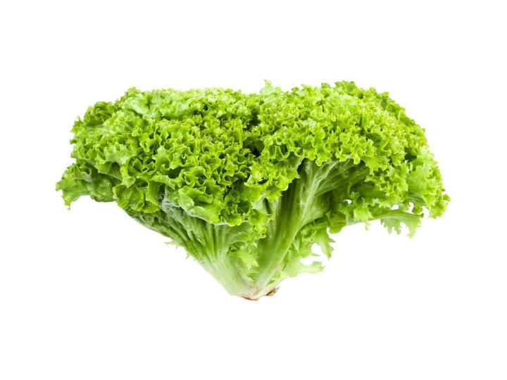 Green Lollo Leaf Lettuce Approx 500 g