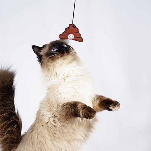 Batshit Cray Cray cat dangler toy with a bat on one end and a pile of shit on the other. An original from the Lucky Bubs pet store.